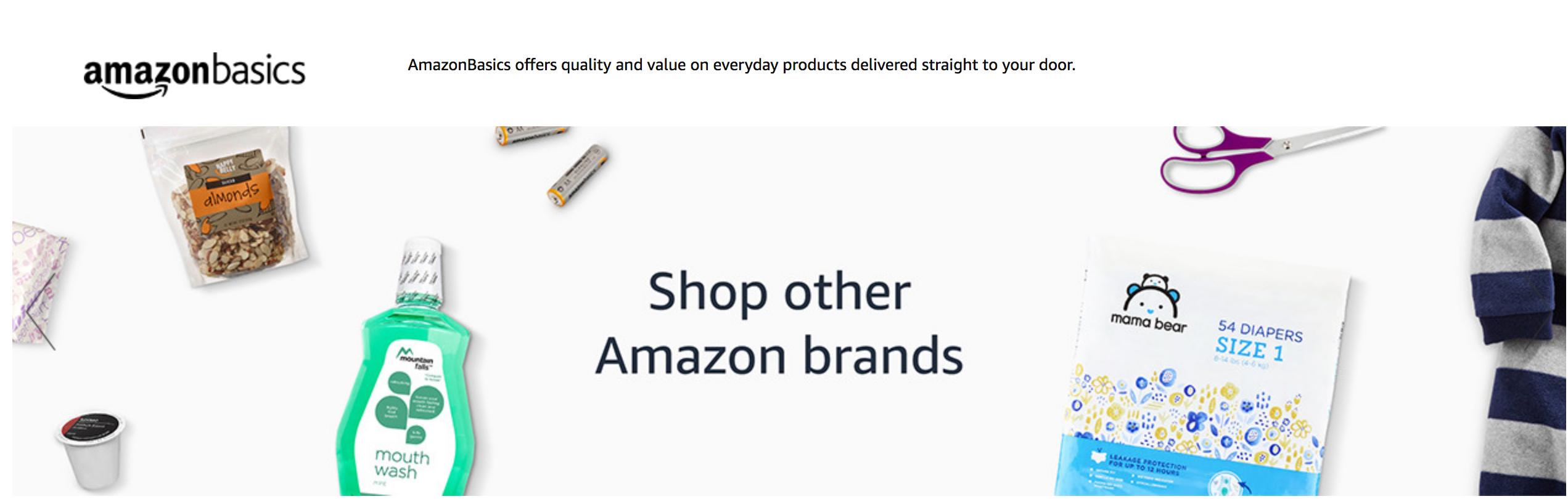 AmazonBasics and other Amazon brands
