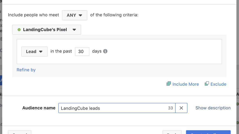 lead based custom audience