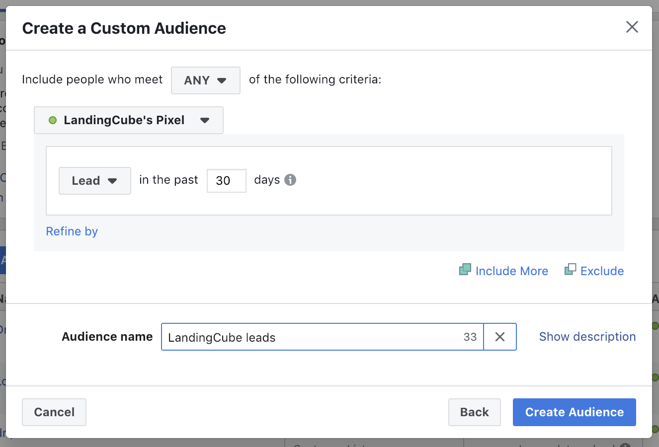 lead based custom audience