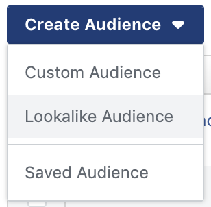 create lookalike audience